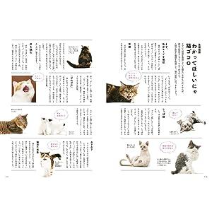 猫 暮らし くらし 猫 Cats Cat ときめく猫図鑑