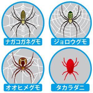 適用害虫イラスト(パッケージ側面)※セアカゴケグモを除く4種