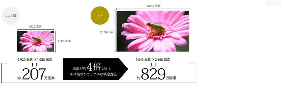 高解象度 4K UHDパネル 映像 ビデオカメラ 一眼レフカメラ 撮影 高精細