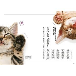 猫アイテム 猫 Cats Cat ときめく猫図鑑