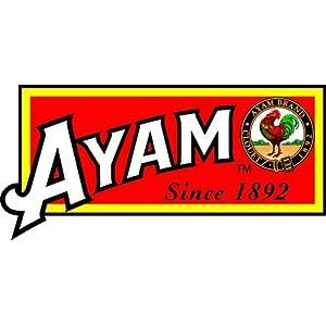 ayam_logo