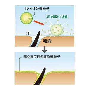 ナノイオン微粒子が肌に広がる仕組み