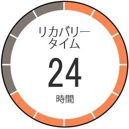 ランニングGPS ForeAthlete 620J タッチパネル カラーディスプレイ Wi-Fi Bluetooth対応 【日本正規品】 GARMIN(ガーミン)