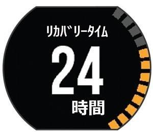 ランニングGPS ForeAthlete 235J 【日本正規品】GARMIN(ガーミン)