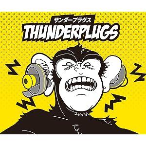 耳栓 イヤープロテクト フェス ライブ 耳鳴り 難聴 聴覚保護 工事 寝つき