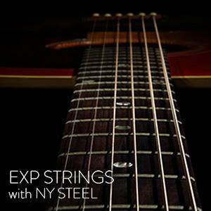 """EXP with NY Steel""とは"