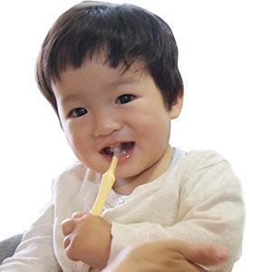 曲がる ベビー歯ブラシ 曲がるん歯ブラシ ベビー用 折れずに曲がる やわらかい 歯にやさしい 日本製 歯科医推奨 事故防止 事故予防 特許取得