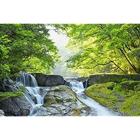 名水 渓谷 清流 天然水 阿蘇