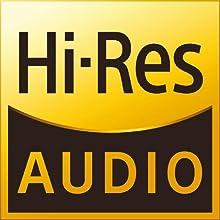 ハイレゾ オーディオ ハイレゾ対応 RHA T20