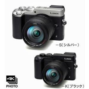 DMC-GX8