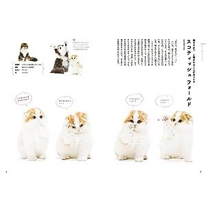 ほのぼの猫図鑑 猫 Cats Cat ときめく猫図鑑