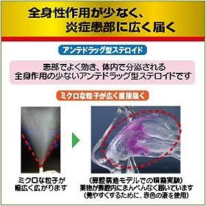 アタック パブロン 鼻炎