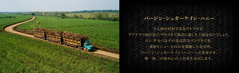 バージン・シュガーケイン・ハニー ラム酒の原料であるサトウキビ。グアテマラ南岸ほど、サトウキビ栽培に適した土地はないでしょう。