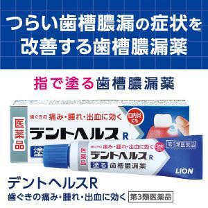 デントヘルスR 塗る歯槽膿漏薬