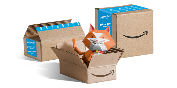 Prime Delivery image