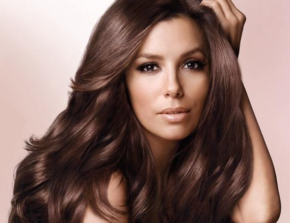 Level 7 Mg Mocha Gold Matrix Socolor Dark Brown Hairs Of