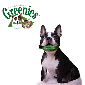 GREENIES Dental Chews for Dogs Logo