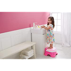 Fisher Price Pink Princess Stepstool Potty Amazon Ca Baby