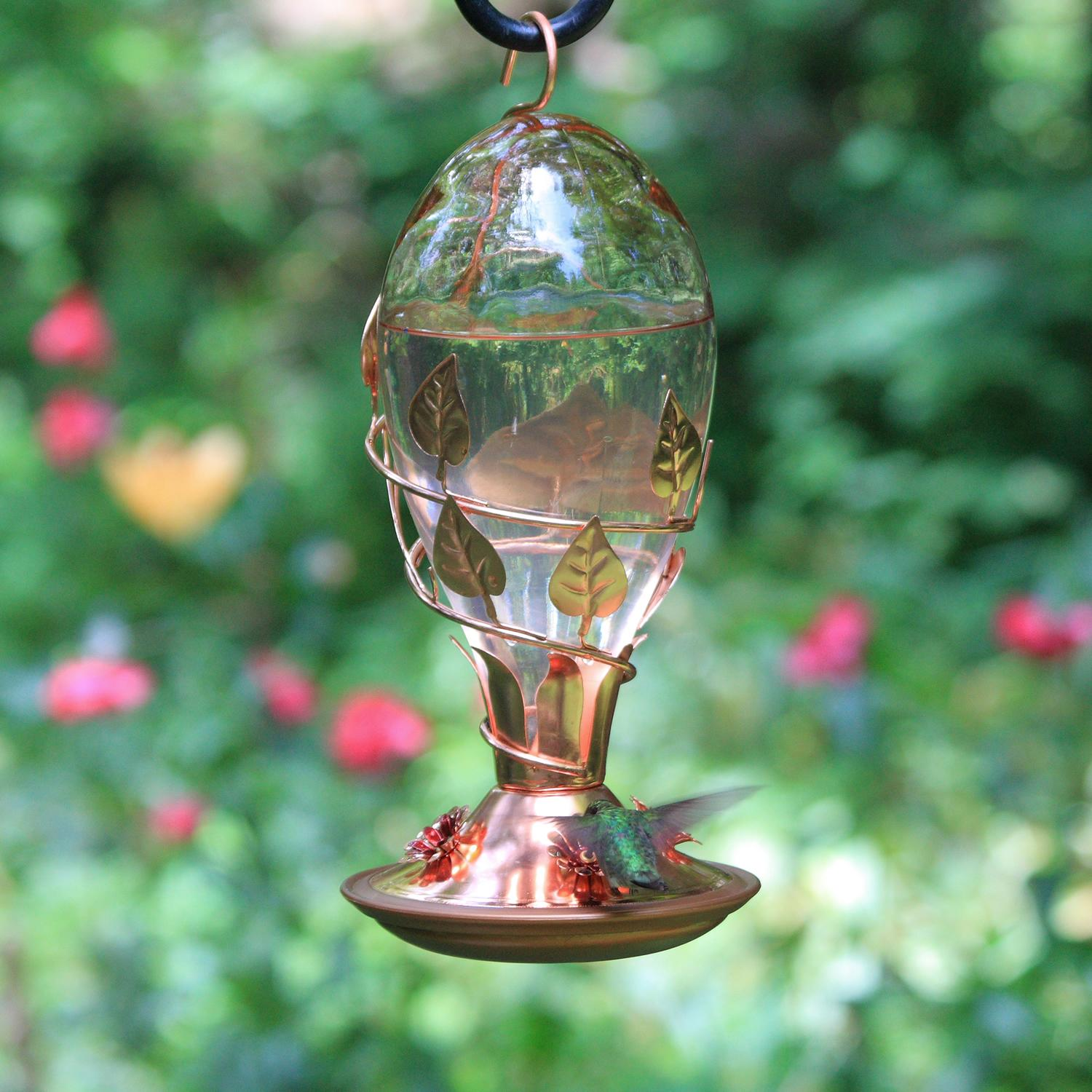 bloom for envy feeders yard glass hummingbird feeder green sale asp