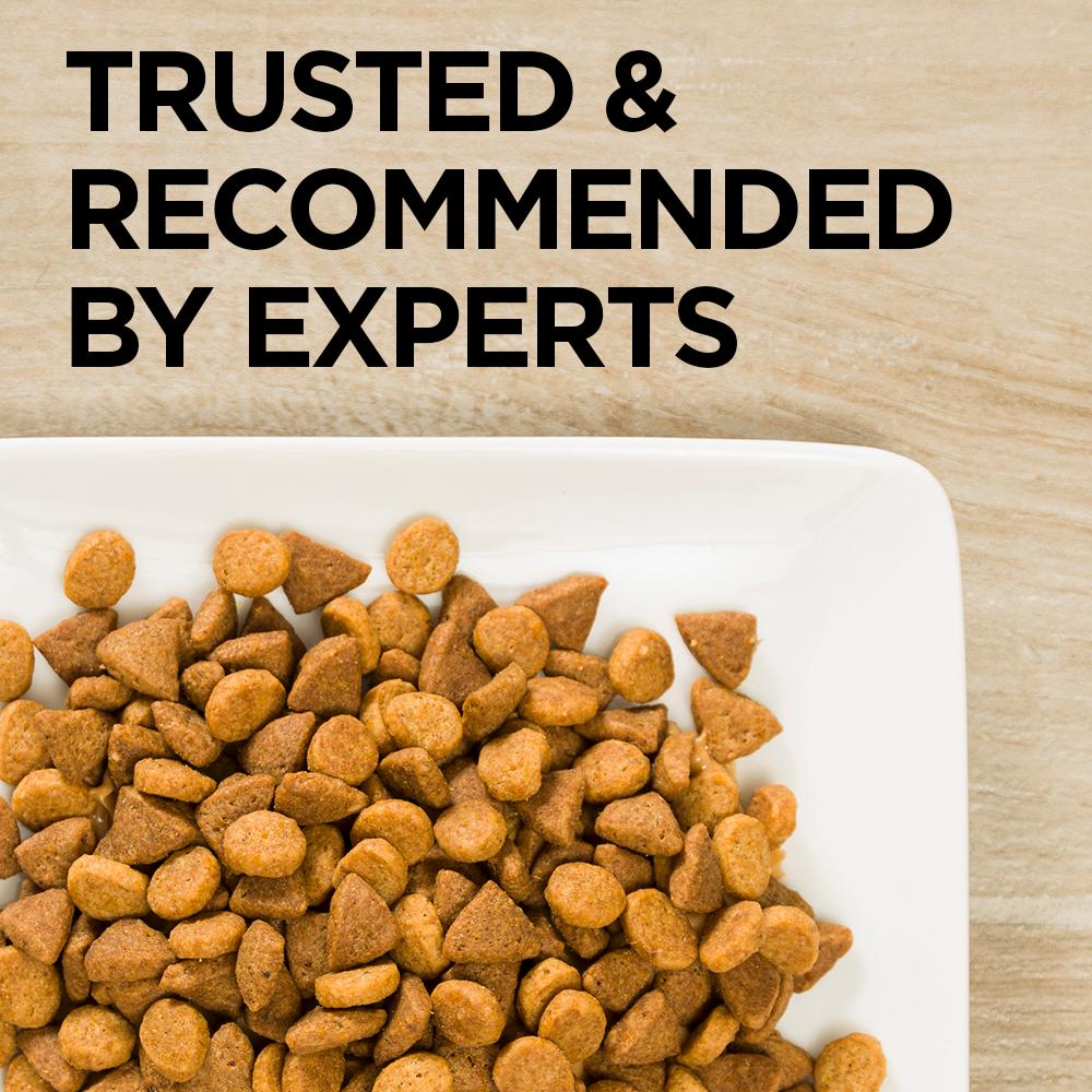 Urinary Tract Cat Food Ingredient