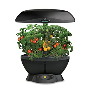 AeroGrow AeroGarden 6 Space Saver Black w Gourmet Herb Seed Kit