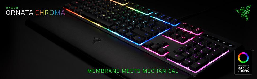 9cf3d936129 Razer Ornata Chroma: Mecha-Membrane - Individually Backlit Mid ...