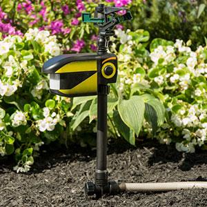 Contech Scarecrow Motion Activated Sprinkler Amazon Ca
