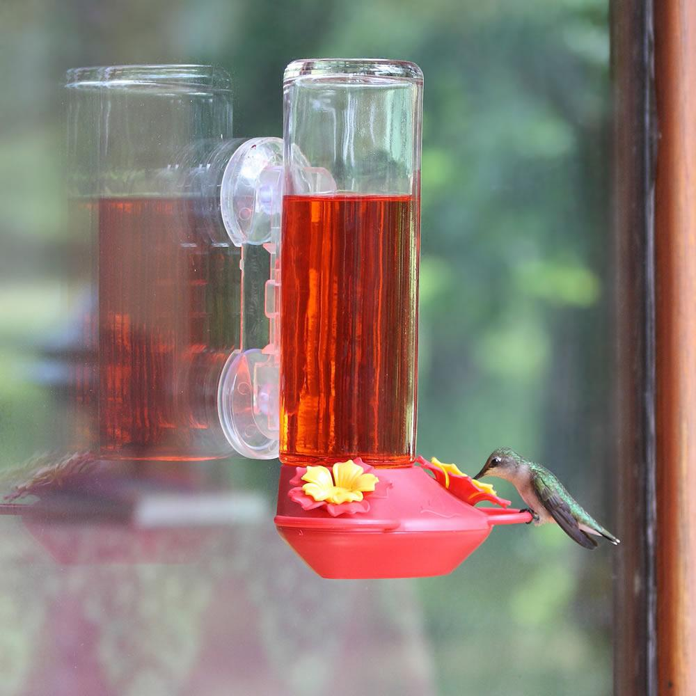 for com duncraft hummingbird zoom feeders sphere glass sale feeder