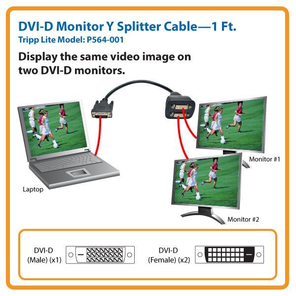 tripp lite dvi splitter cable  digital monitor y  dvi