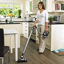 pet, pet hair, accessory, handheld vacuum