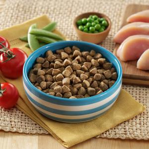Wellness complete health natural dry dog food healthy weight recipe complete health natural dog food a complete wellness diet forumfinder Gallery