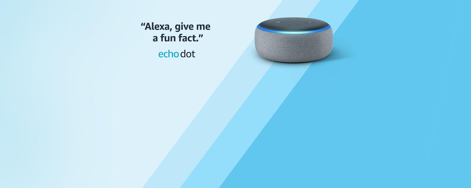 Alexa, give me a fun fact. | Echo Dot