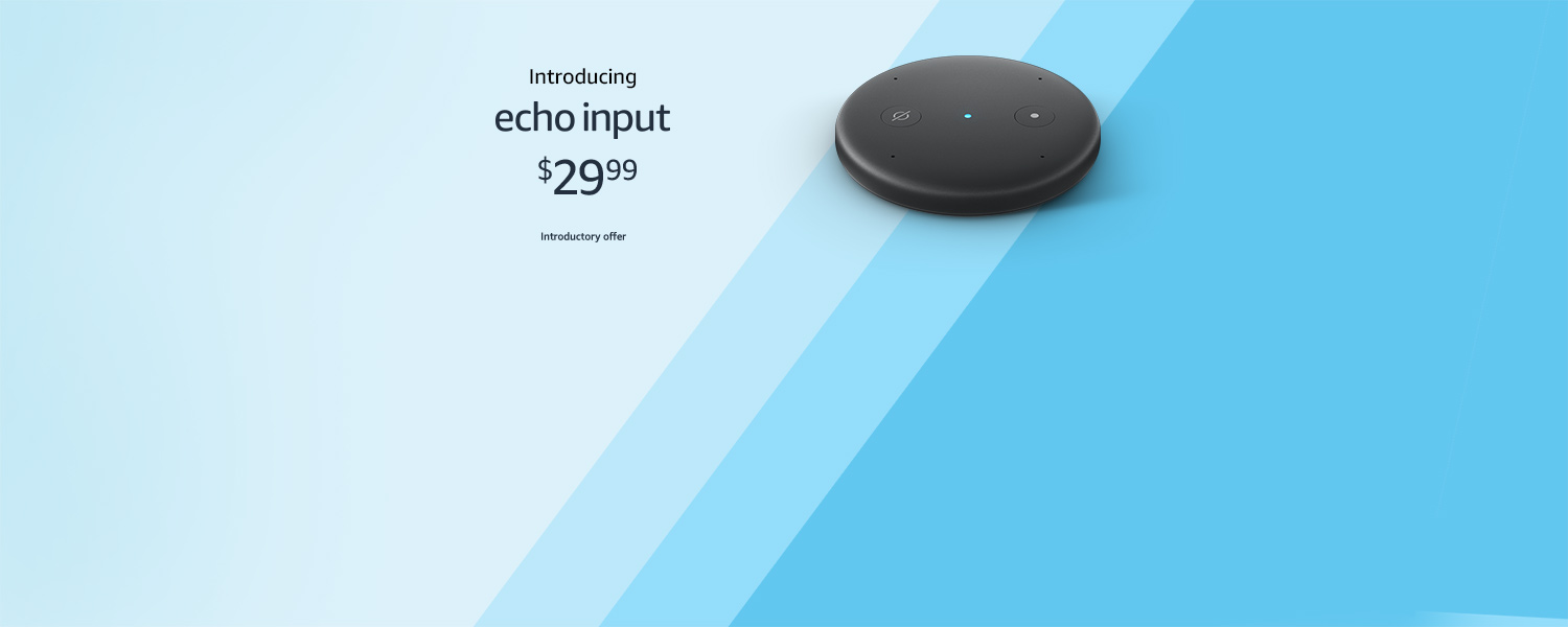 Introducing Echo Input | $29.99 | Introductory offer