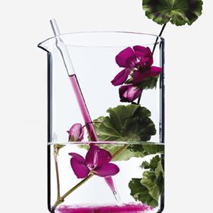 Ingredienti, ingrediente, naturale, naturali, botanico, botanici, bellezza, bello, bella, colorato,