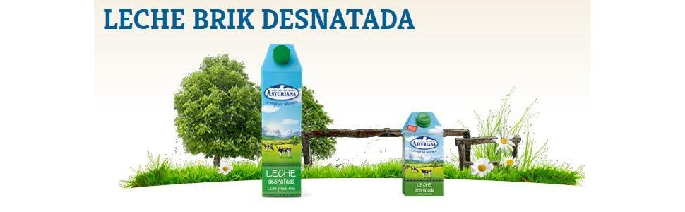 Central Lechera Asturiana - Leche UHT Desnatada - 1 L: Amazon.es ...