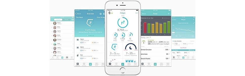 Fitbit Flex 2 Pulsera de Actividad física, Unisex, Negro, Talla única: Fitbit: Amazon.es: Deportes y aire libre