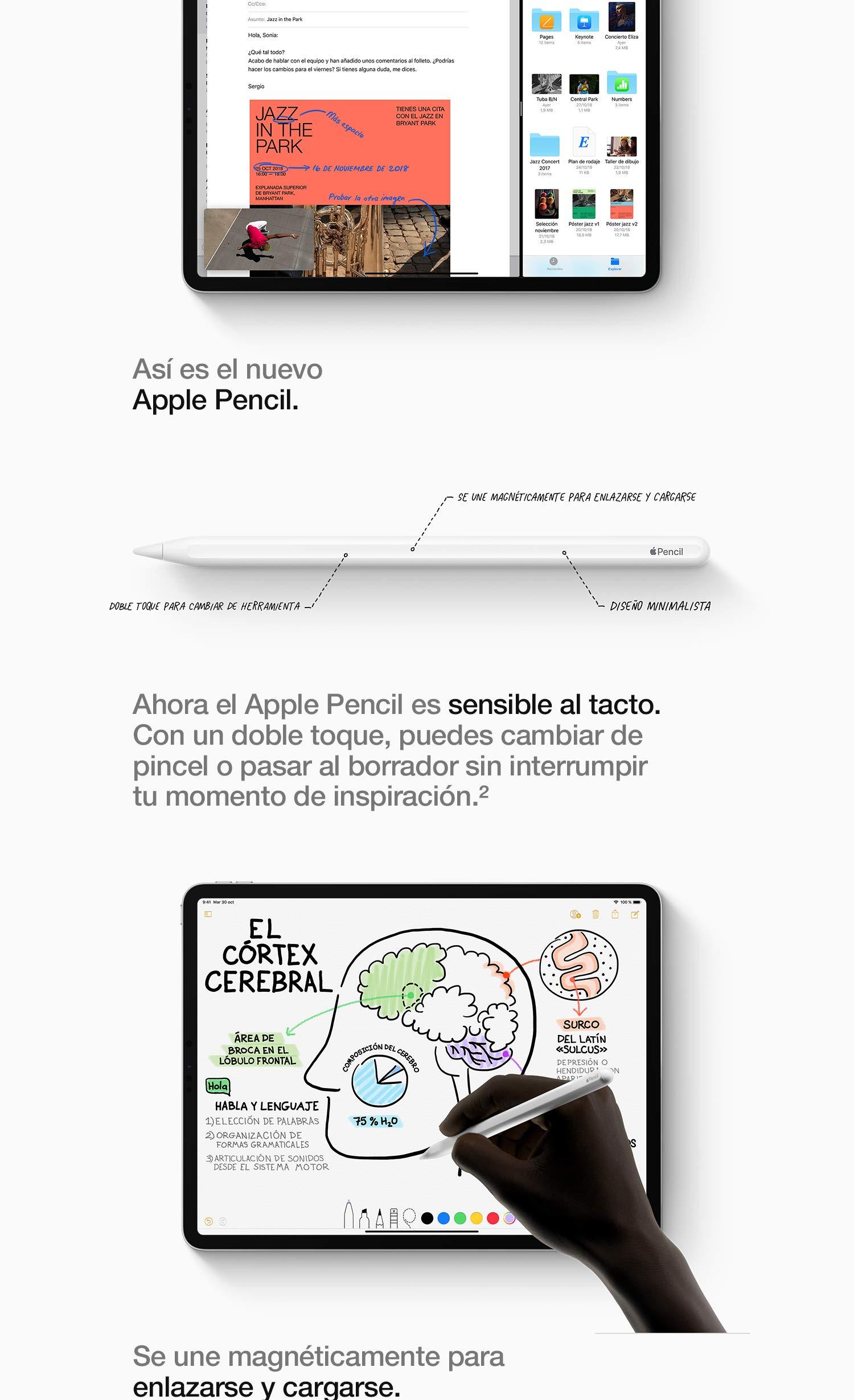 Apple iPad Pro (11 pulgadas y 64GB con Wi-Fi) - Gris espacial (Ultimo Modelo)
