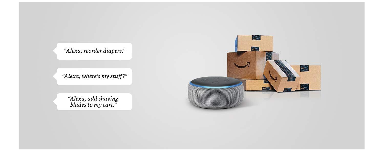 Echo Dot gift twin pack (Black & Grey) with Syska 9W bulb: Amazon in
