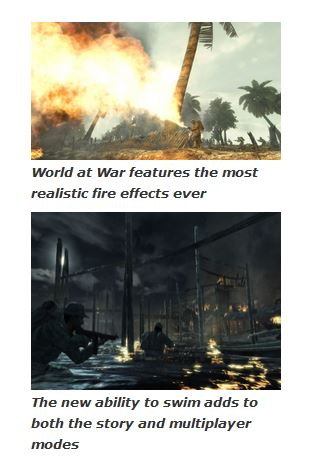 Call of Duty: World At War (PC) 3