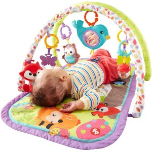 17e067bf32ad3 Fisher-Price 3-in-1 Musical Activity Gym