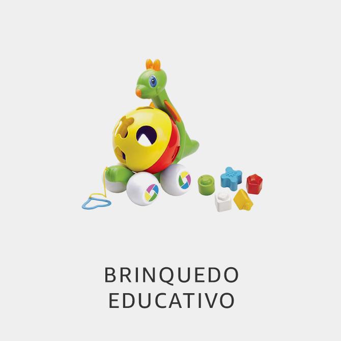 Brinquedos Educativo