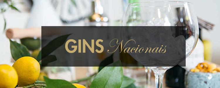 Gins Nacionais