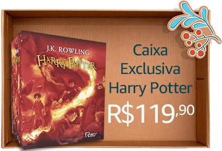 Caixa Exclusiva Harry Potter