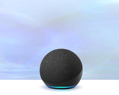 Novo Echo Dot