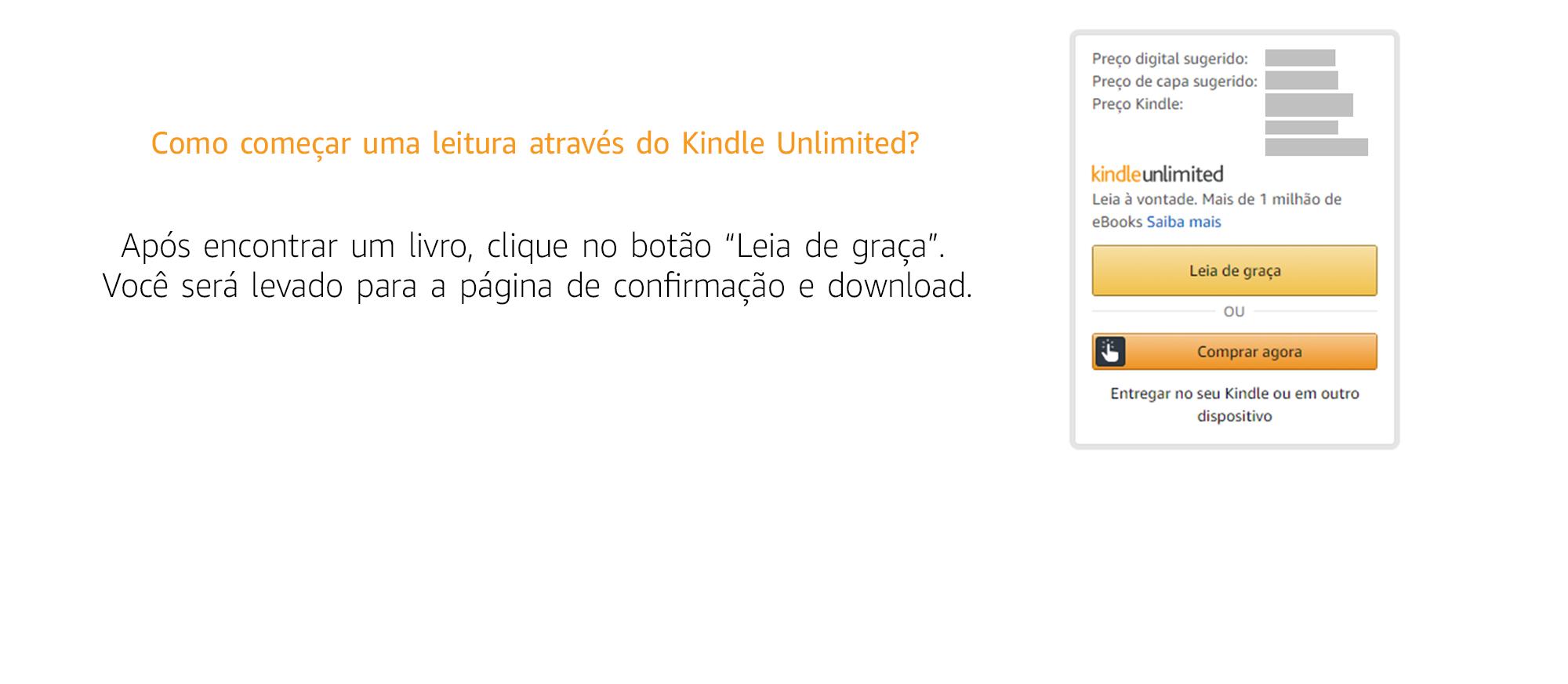 """Após encontrar um livro, clique no botão """"Leia de graça"""" e você será levado para a página de confirmação e download."""