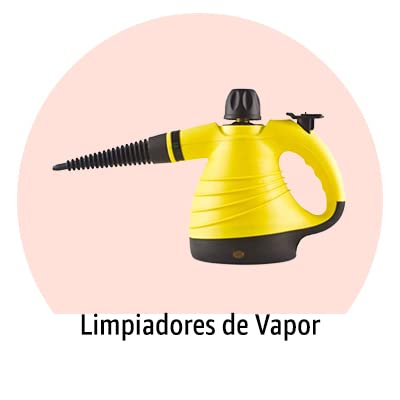 Limpiadores de Vapor