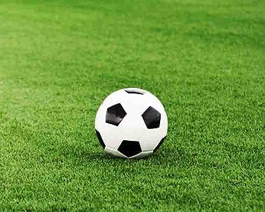 Para los apasionados del fútbol
