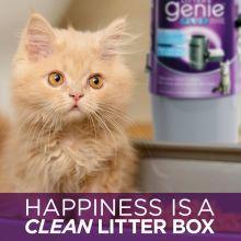 litter genie, kitty litter, pets, litter genie refills, kitty litter box, cat, pet supplies, cats