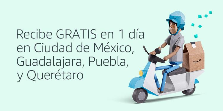 Envíos GRATIS en 1 dia en CDMX, QRO, PUE y GDL