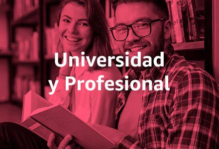 Universidad de Profesional